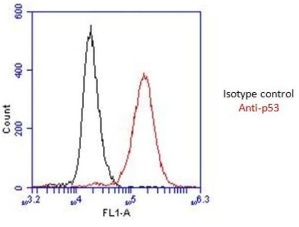 Flow Cytometry - Anti-p53 antibody [9D3DE3] (ab154036)