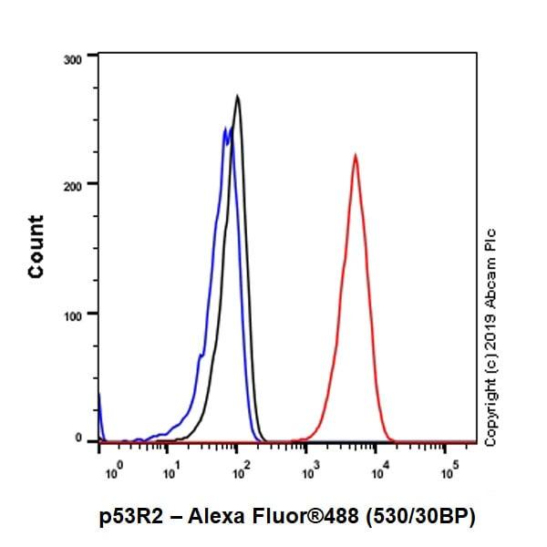 Flow Cytometry (Intracellular) - Anti-p53R2 antibody [EPR8816] (ab154194)