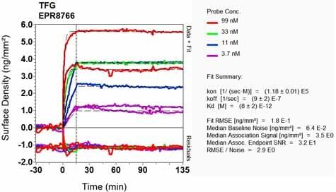 OI-RD Scanning - Anti-TRK fused gene antibody [EPR8766] (ab156866)