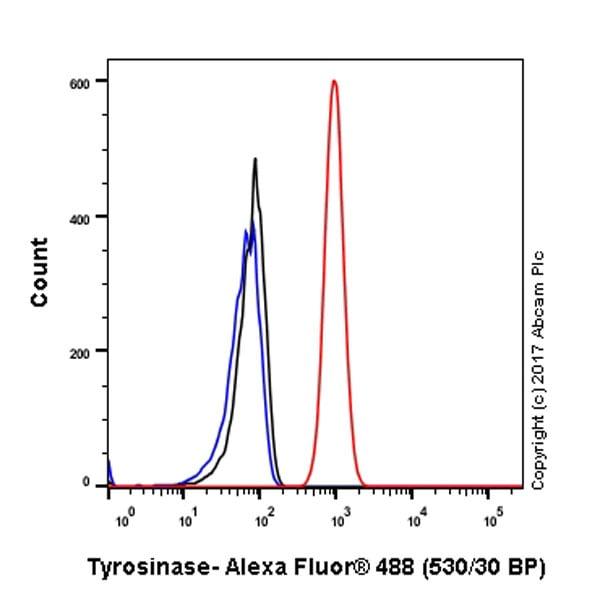 Flow Cytometry (Intracellular) - Anti-Tyrosinase antibody [EPR10141] (ab170905)