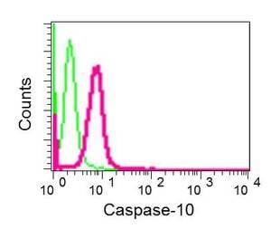 Flow Cytometry (Intracellular) - Anti-Caspase-10/CASP-10 antibody [EPR10890] (ab177475)