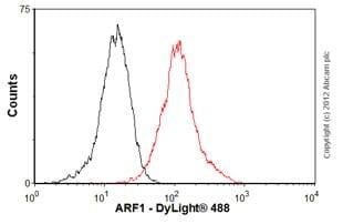 Flow Cytometry - Anti-ARF1 antibody [ARFS 1A9/5] (ab18108)
