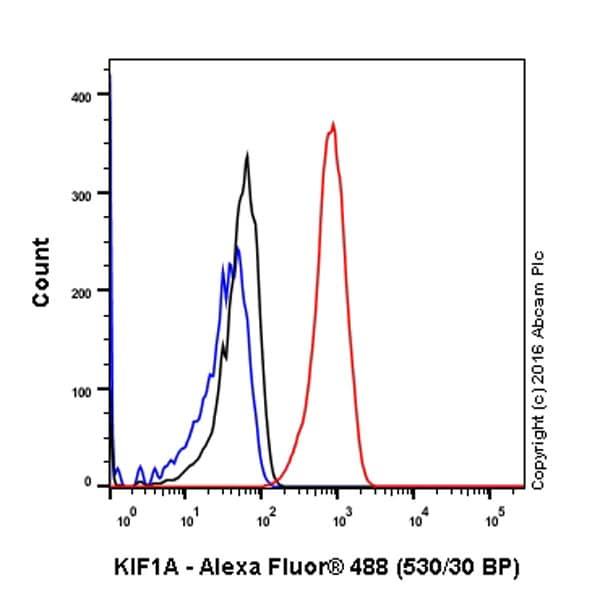 Flow Cytometry (Intracellular) - Anti-KIF1A antibody [EPR11790(B)] (ab180153)