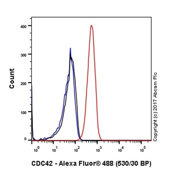 Flow Cytometry - Anti-CDC42 antibody [EPR15620] (ab187643)