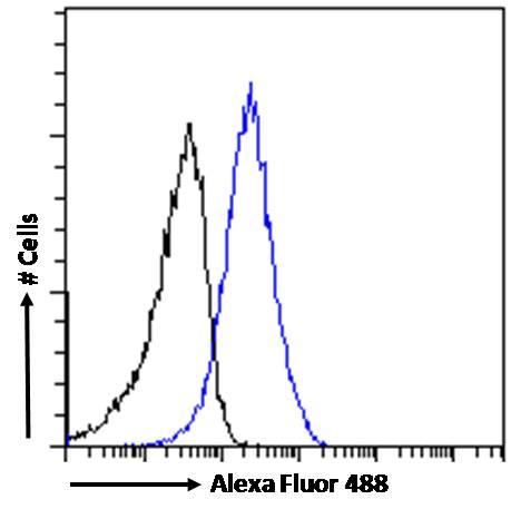 Flow Cytometry - Anti-DDAH1 antibody (ab2231)