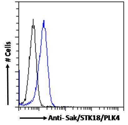 Flow Cytometry (Intracellular) - Anti-PLK4 antibody (ab2642)