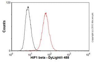 Flow Cytometry - Anti-HIF1 beta antibody [2B10] (ab2771)