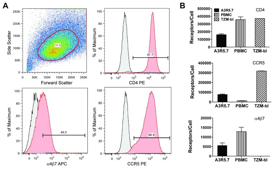 APC Conjugation Kit - Lightning-Link® labeling anti-human 4ß7 antibody for Flow cytometry