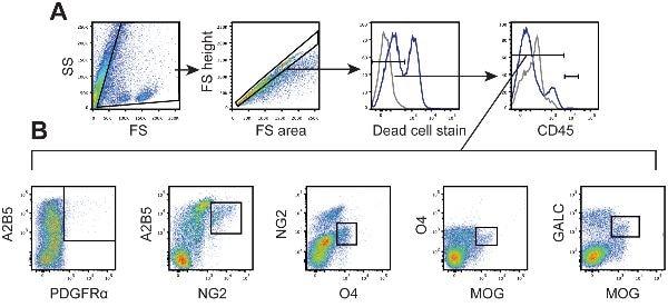Flow Cytometry - APC Conjugation Kit;- Lightning-Link