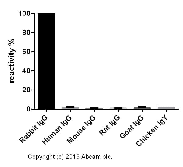 ELISA - Donkey Anti-Rabbit IgG H&L (Biotin) (ab207999)