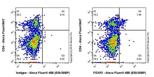 Flow Cytometry (Intracellular) - Anti-FOXP3 antibody [EPR22102-37] (ab215206)