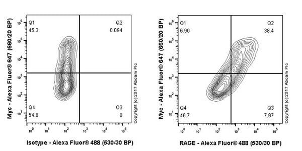 Flow Cytometry - Anti-RAGE antibody [EPR21171] (ab216329)