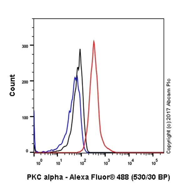 流式细胞术-抗PKCα抗体[Y124]-BSA和叠氮(ab221611)