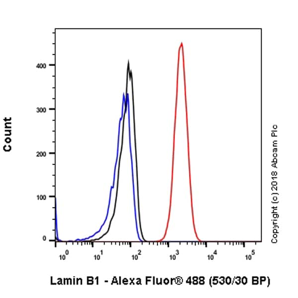 Flow Cytometry (Intracellular) - Anti-Lamin B1 antibody [EPR22165-121] (ab229025)