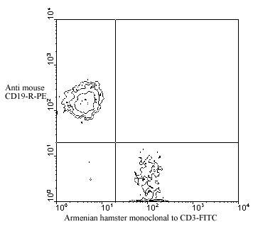 Flow Cytometry - CD3 antibody [145-2C11] (FITC) (ab24947)