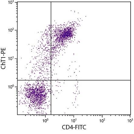 Anti-ChT1 antibody [CT1] (Phycoerythrin) (ab25440)