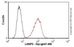 Flow Cytometry - Anti-LAMP2 antibody [H4B4] - Lysosome Marker (ab25631)