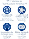Alexa Fluor® 647 Anti-ICOS Ligand/ICOSL antibody [EPR23289-152] (ab275743)