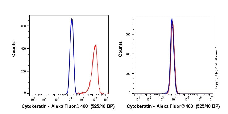 Flow Cytometry - Alexa Fluor® 488 Anti-pan Cytokeratin antibody [C-11] (ab277270)