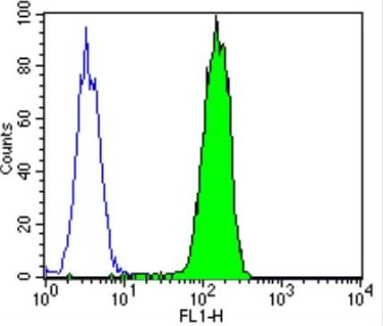Flow Cytometry - Anti-PMP70 antibody (Biotin) (ab28499)
