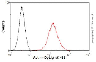 Flow Cytometry - Anti-Actin antibody [ACTN05 (C4)] (ab3280)