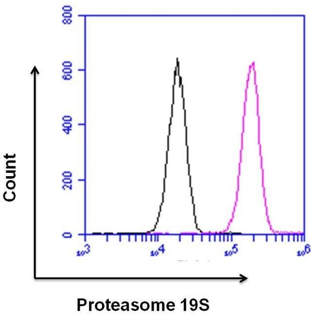 Flow Cytometry - Anti-Proteasome 26S S3/PSMD3 antibody (ab3316)