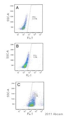 Flow Cytometry - Anti-VSV-G tag antibody (FITC) (ab3863)