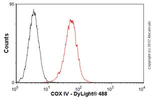 Flow Cytometry - Anti-Calnexin antibody [AF18] (ab31290)