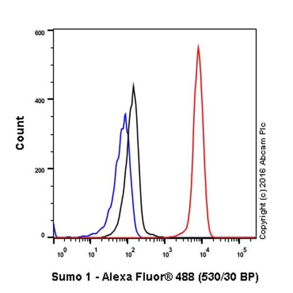 流式细胞术(细胞内)-抗Sumo 1抗体[Y299]-芯片级(ab32058)