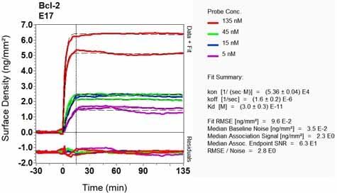 OI-RD Scanning - Anti-Bcl-2 antibody [E17] (ab32124)