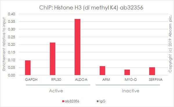芯片-抗组蛋白H3(双甲基K4)抗体[Y47]-芯片级(ab32356)