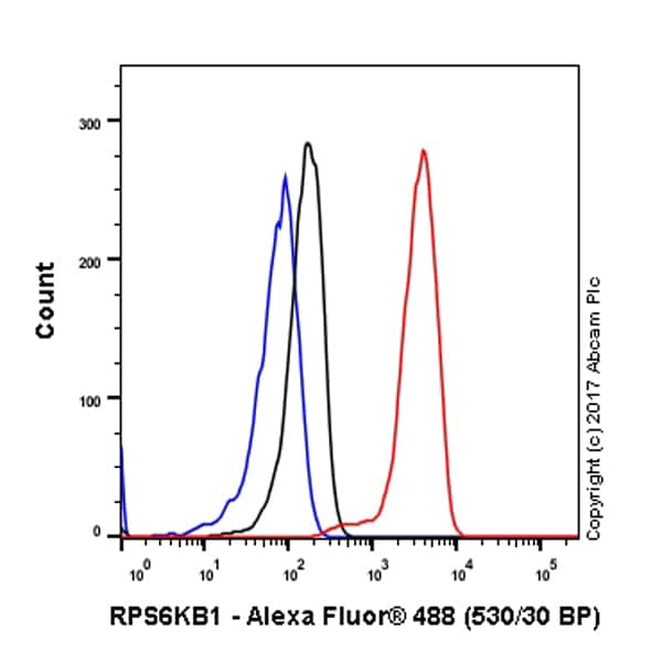Flow Cytometry抗S6K1抗体[E33](AB32529)