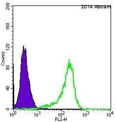 流式细胞术-抗ERK1抗体[Y72](ab32537)