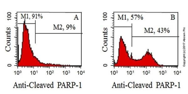 流式细胞术-抗切割PARP1抗体[Y34](ab32561)