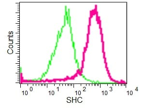 Flow Cytometry - Anti-SHC antibody [EP332Y] (ab33770)