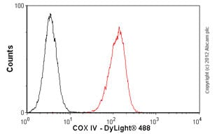 Flow Cytometry - Anti-COX IV antibody [mAbcam33985] - Mitochondrial Marker (ab33985)