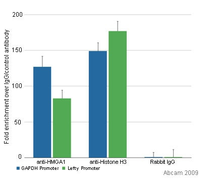 ChIP - Anti-HMGA1a / HMGA1b antibody - ChIP Grade (ab4078)