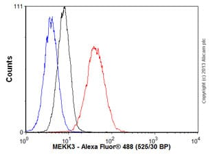 Flow Cytometry - Anti-MEKK3 antibody [ep599y] (ab40750)
