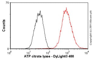 Flow Cytometry - Anti-ATP citrate lyase antibody [EP704Y] (ab40793)