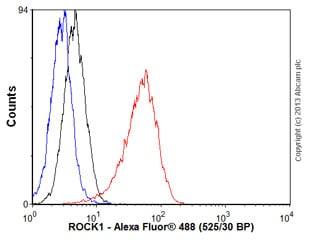 Flow Cytometry -抗ROCK1抗体[EP786Y](AB45 171)