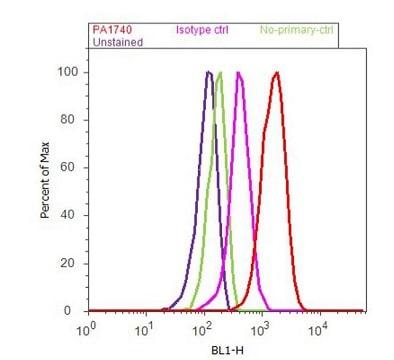 Flow Cytometry - Anti-SNAP25 antibody (ab5666)