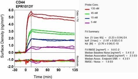 OI-RD Scanning - Anti-CD44 antibody [EPR1013Y] (ab51037)