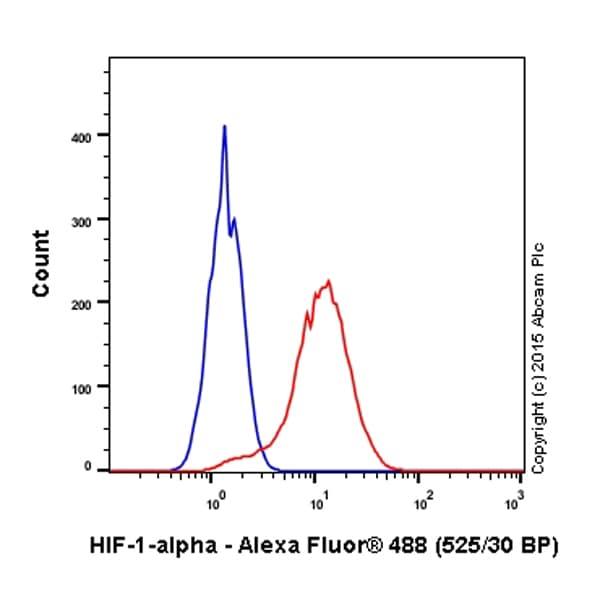流式细胞术-抗HIF-1α抗体[EP1215Y](ab51608)