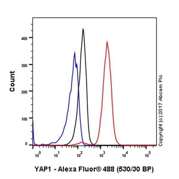 Flow Cytometry - Anti-YAP1 antibody [EP1674Y] (ab52771)