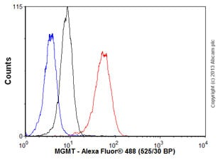 Flow Cytometry - Anti-MGMT antibody [SPM287], prediluted (ab54306)