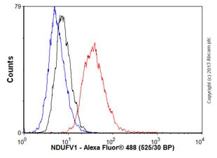Flow Cytometry - Anti-NDUFV1 antibody (ab55535)