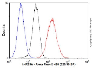 Flow Cytometry - Anti-hHR23A antibody (ab55725)