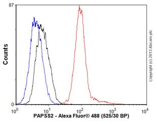 Flow Cytometry - Anti-PAPSS2 antibody (ab56393)