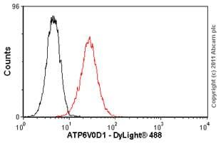 Flow Cytometry - Anti-ATP6V0D1 antibody (ab56441)