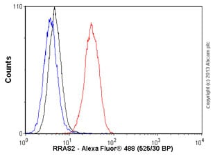 Flow Cytometry - Anti-RRAS2 antibody (ab56859)
